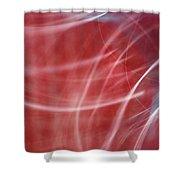 Enlighten Shower Curtain
