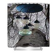 Enlightened Birch Trees Shower Curtain