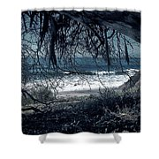 Entangled Dreams Shower Curtain