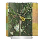 Entanglement Shower Curtain