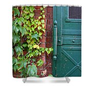 Enter Vine Door Shower Curtain