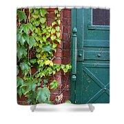 Enter Vine Door Shower Curtain