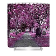 Entrance To A Cemetery Shower Curtain