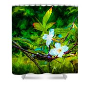 Entwined Chiaroscuro Shower Curtain