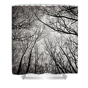 Entwined In The Sky Shower Curtain