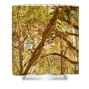Entwined Shower Curtain