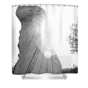Ephesian Statue Shower Curtain