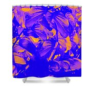 Epiphany 4 Shower Curtain