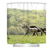 Equines For Freedom Shower Curtain