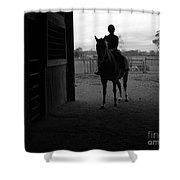 Equus Sapien I Shower Curtain