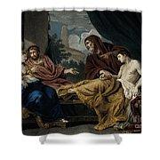 Erasistratus, Ancient Greek Physician Shower Curtain