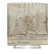 Ergasto And Corisca Shower Curtain