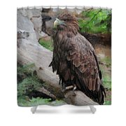 Erne Shower Curtain