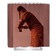 Ernie Banks Sculpture Shower Curtain