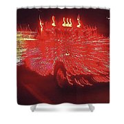 Ernst Haas Homage Fire Truck Electric Lights Xmas Parade Casa Grande Az 2001 Shower Curtain