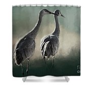 Escalante Sandhill Cranes Shower Curtain