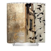 Escape Shower Curtain by Sharon Coty