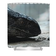 Escargot Shower Curtain