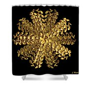 Essence Of Alchemy Shower Curtain