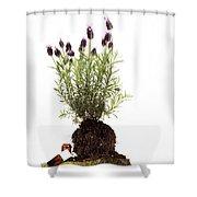 Essential Oil Of Spanish Lavender Shower Curtain