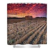 Essex Hay At Sunrise Shower Curtain