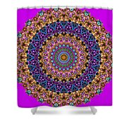 Estate Jewels Mandala No. 2 Shower Curtain