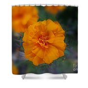 Eternal Giver Shower Curtain