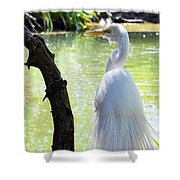 Ethereal Snowy Egret Shower Curtain