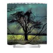 Ethereal Trees Shower Curtain