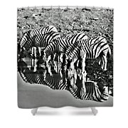 Etosha Pan Reflections Shower Curtain