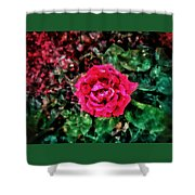 Etude  With       Rose -oil Shower Curtain