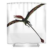 Eudimorphodon On White Shower Curtain
