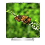 Euphydryas Aurinia  Shower Curtain