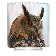Eurasian Eagle-owl Shower Curtain