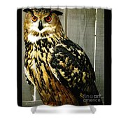 Eurasian Eagle-owl With Oil Painting Effect Shower Curtain