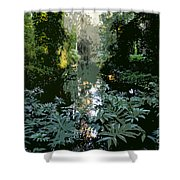 Eureka Springs Shower Curtain