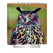 European Eagle Owl Shower Curtain