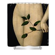 Eve Shower Curtain by The Elder Lucas Cranach