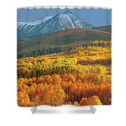 Evening Aspen Shower Curtain