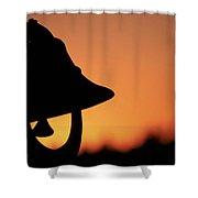Evening Bell Shower Curtain