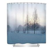 Evening Birches Shower Curtain