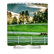 Evening Graze In Tennessee Shower Curtain