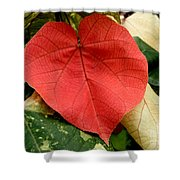 Evening Hau Tree Leaves Shower Curtain