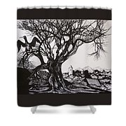 Evening In Midnapore Shower Curtain