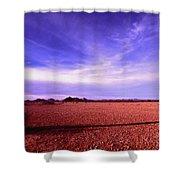 Evening In The Arizona Desert Shower Curtain