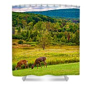 Evening In The Valley 2  Shower Curtain