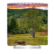 Evening In The Valley Shower Curtain