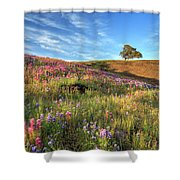 Evening Light At North Table Mountain Shower Curtain