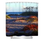 Evening Light At The Beach Shower Curtain