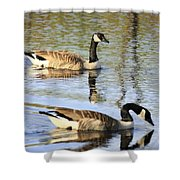 Evening Light On Nature Shower Curtain